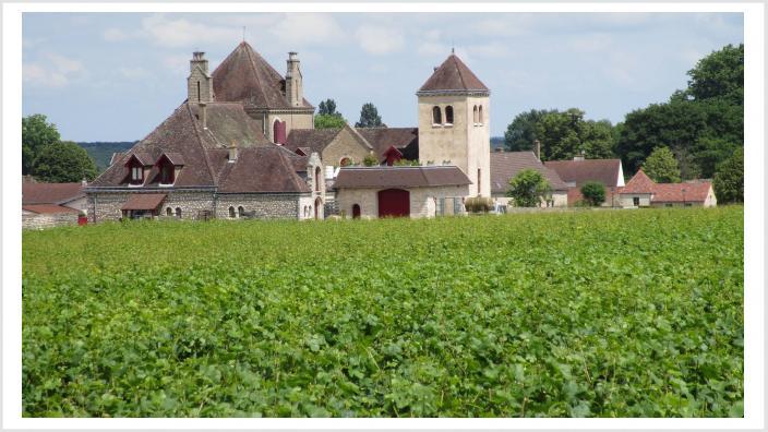 Weingut an der Cote de Grand_16-9